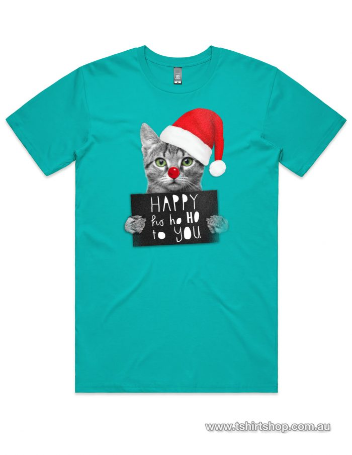 Cute kitten with a santa hat t-shirt in a Teal colour